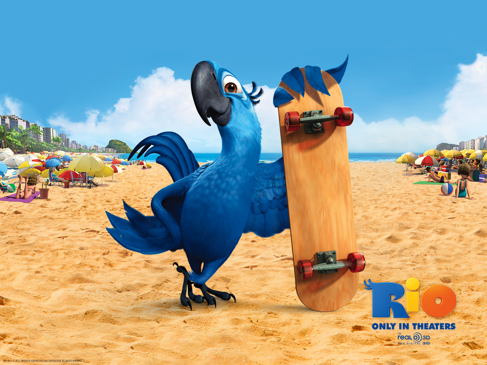 Rio the Movie Blue Macaws